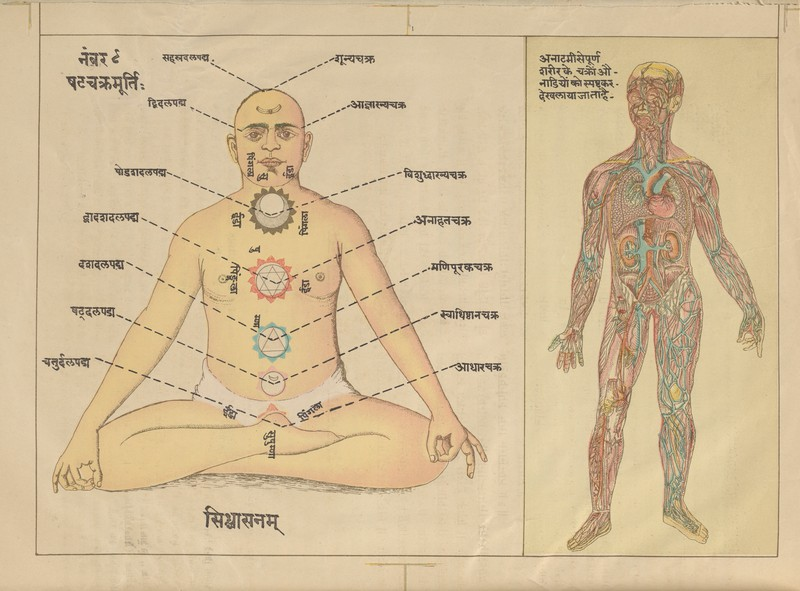 A History Of Yoga Postures Engineering And Employing The Yoga Body 2 February 2019 Enigmatic Yoga